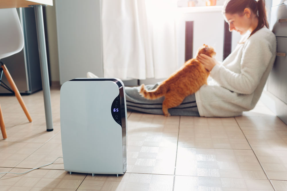 Here's 5 Ways to Clean Your Humidifier